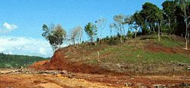 SITUACION DE LOS RECURSOS NATURALES
