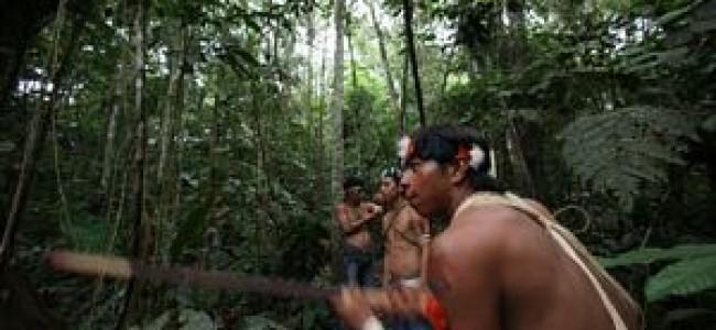 LAS PETROLERAS REGRESAN A LA AMAZONIA DE ECUADOR