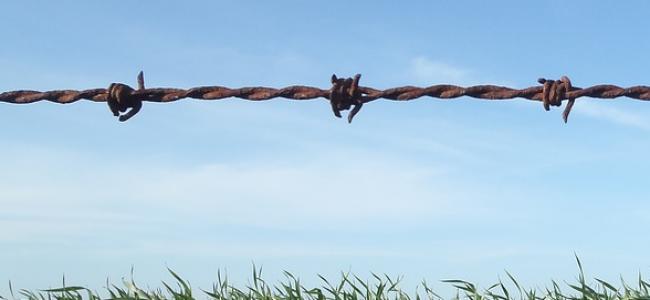 EL ATAQUE A LA AGROECOLOGIA EN URUGUAY