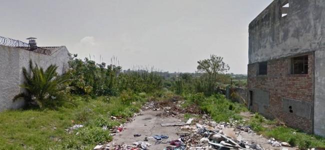 DIA DEL AMBIENTE EN URUGUAY BAJO PANDEMIA