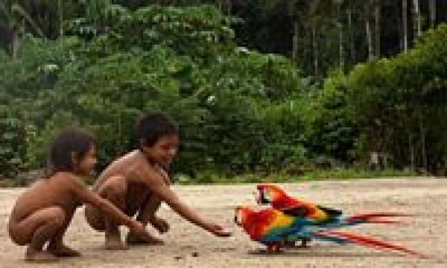 ENCADENAMIENTOS AMAZONICOS